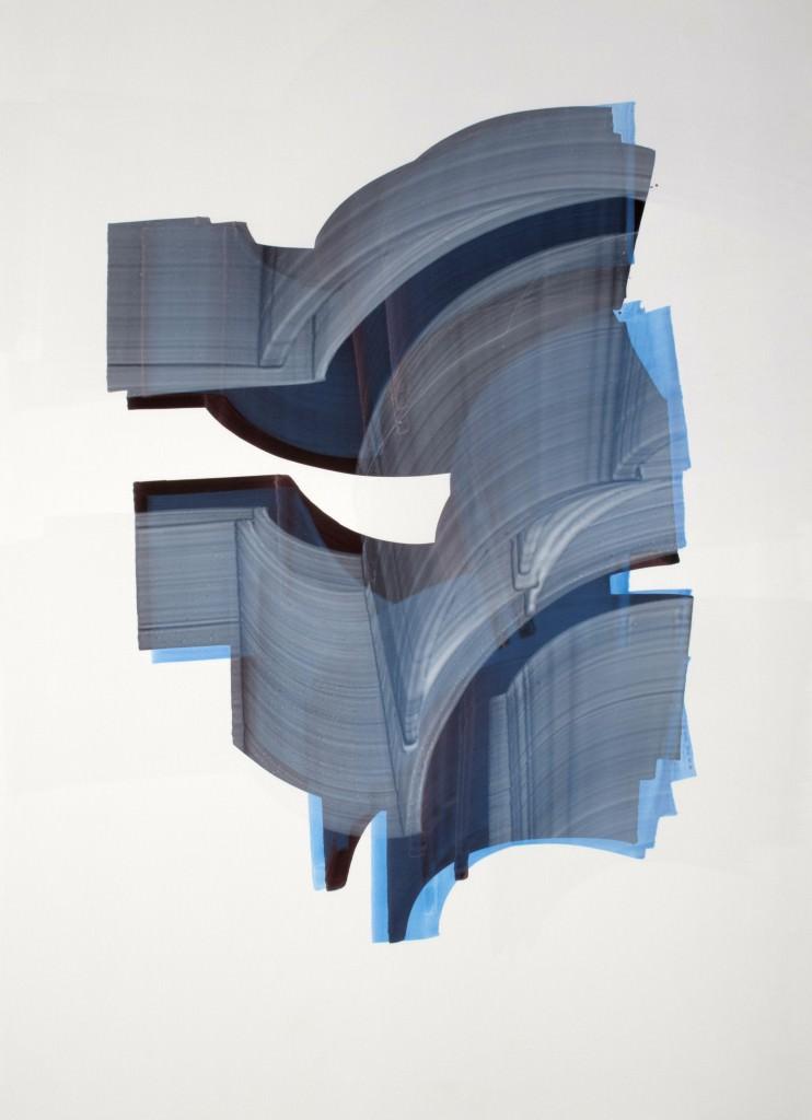 Sergio Barrera. serie. Camaleón Velado, nº 22 - veiled chameleon - 70 x 50 cm. Acrílico sobre papel de piedra y tabla. 2012.