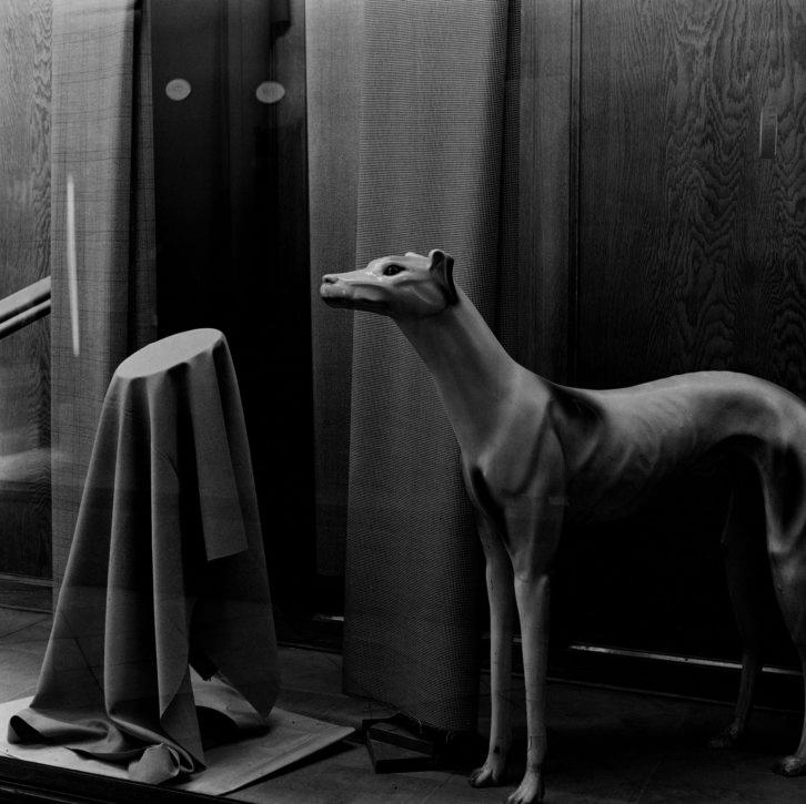"""""""Sastrería La Neutral, Barcelona"""", Ferran Freixa, 1979. Gelatina de plata, copia de época, 26 x 26 cm. © Ferran Freixa / VEGAP. Imagen cortesía de Colectania."""