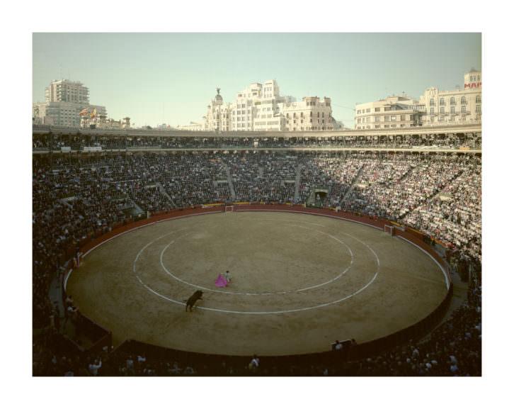 Jaume Albert. Toros. Imagen cortesía del artista