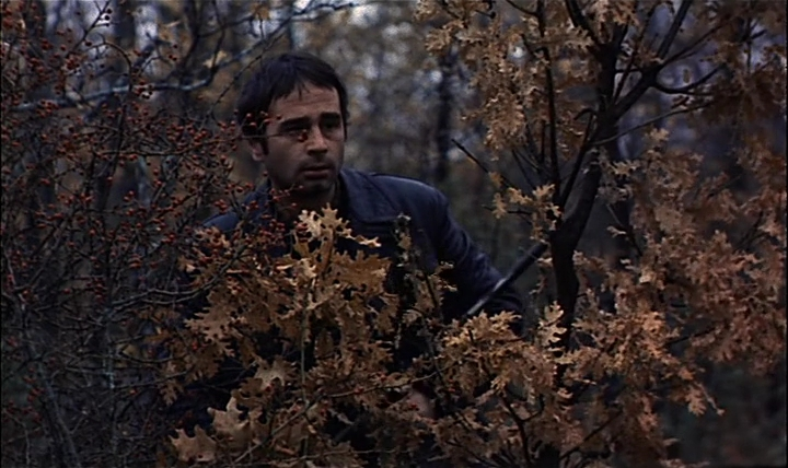 Ovidi Montllor en'Furtivos', película de José Luis Borau que se proyectará en Mostra Viva Cinema del Mediterrani.