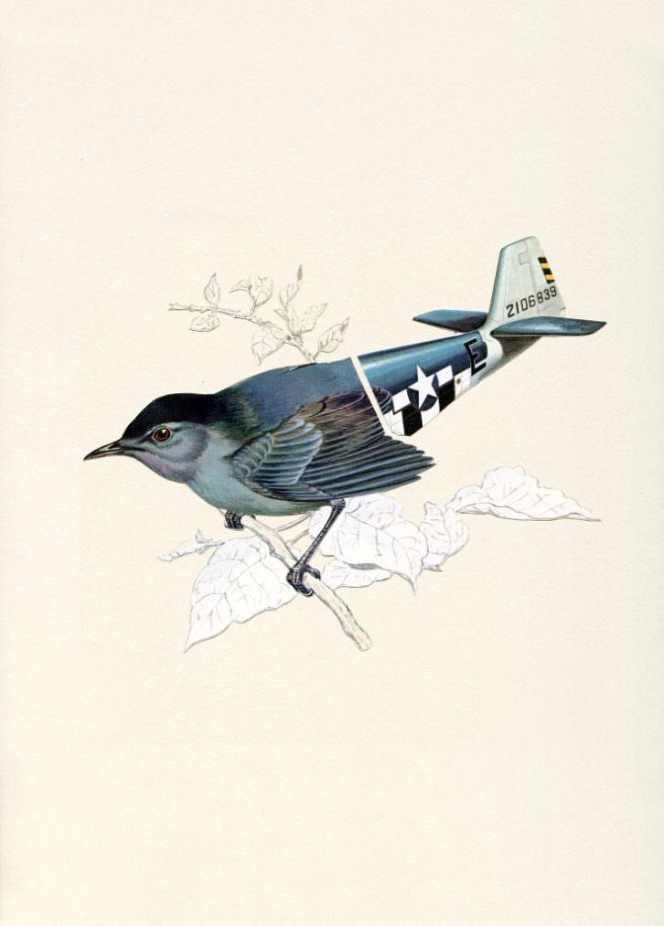 Collage. Obra de Valero Doval. Imagen por cortesía de la galería.