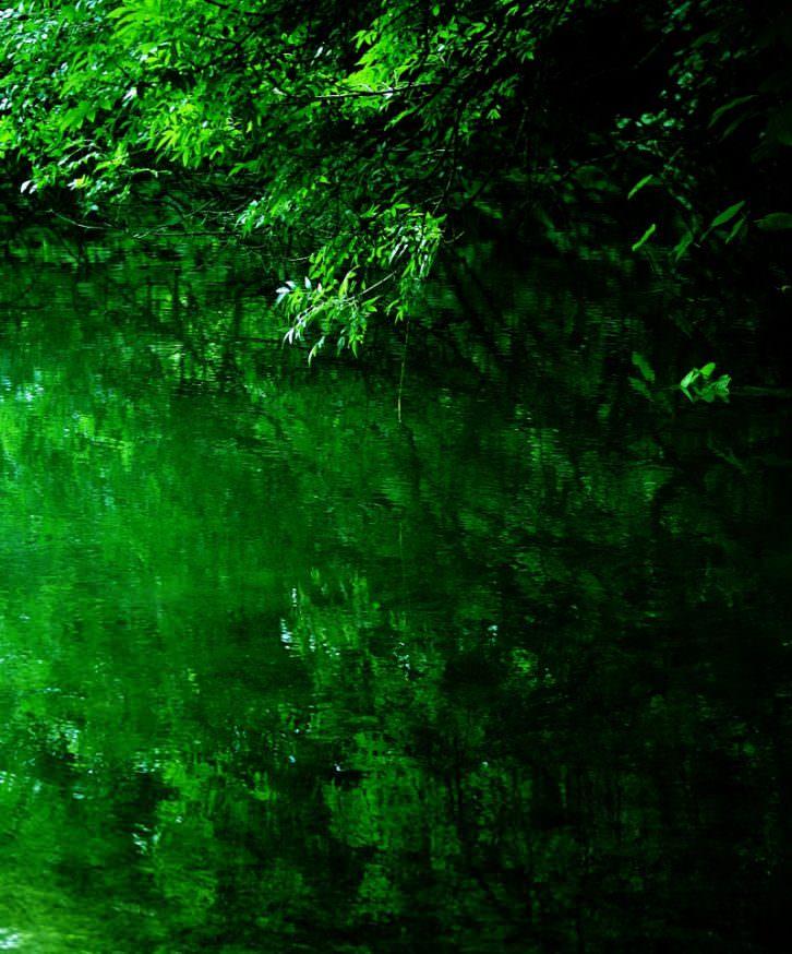 Tierra Naturaleza