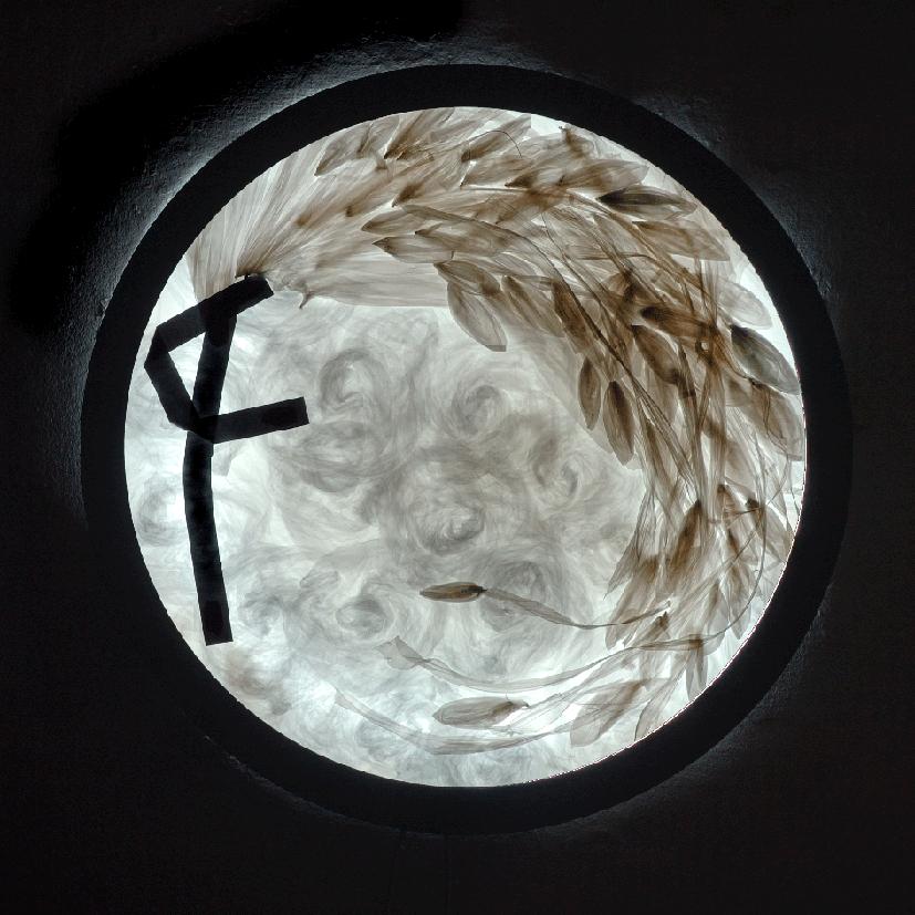 Mario Pasqualatto. Las alas del ángel. 2007. Imagen cortesía de la Galería Cànem