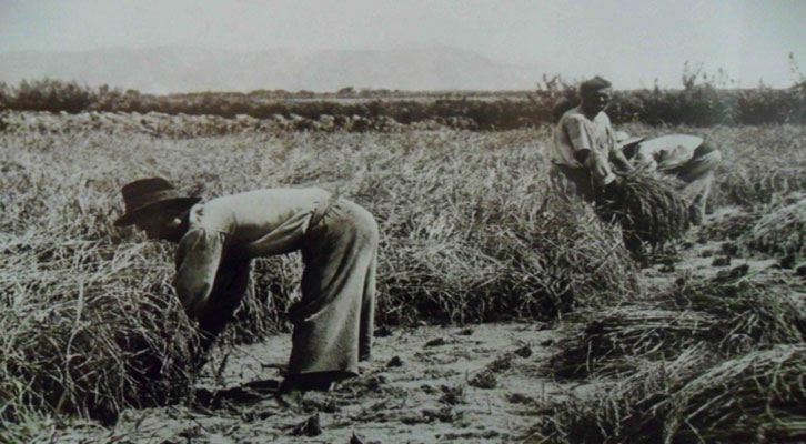 Imagen del archivo fotográfico de la agencia EFE.