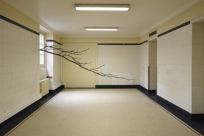 Paula Anta, Serie L'Arquitecture des Arbres, 2013. Installation made of a painted tree with black acrylic / C-print, 120 x 165 cm. Imagen cortesía de la galería.