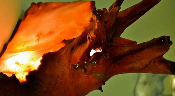 Detalle de una de las esculturas de luz de Davy Bytrap y Mercedes Mollá. Imagen cortesía de Imprevisual.