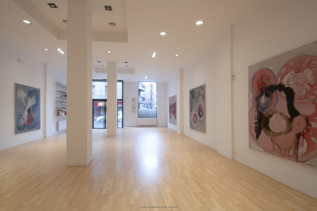 Fotografía del interior de la Galería Carolina Rojo, con el montaje de la exposición de Charo Pradas. Imagen cortesía de la galería.