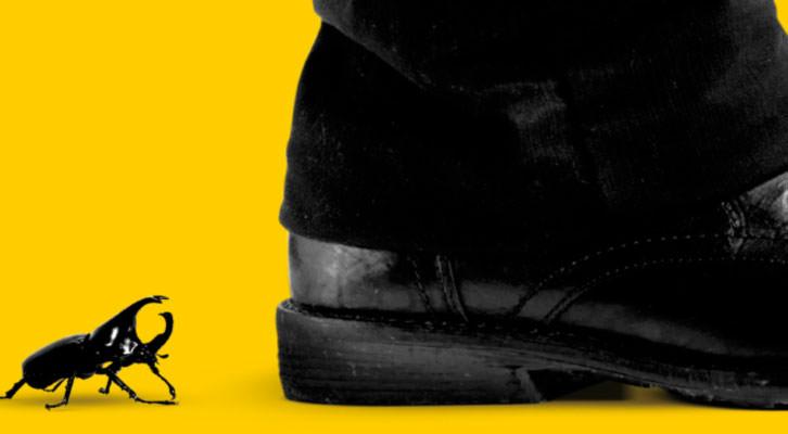 Detalle de la portada del libro 'Les escopinades dels escarabats', de Andreu Martin, en la editorial Bromera.