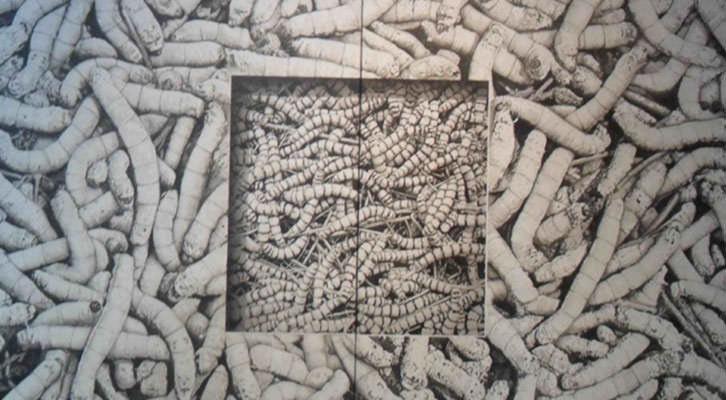 Detalle de la obra de Manuel Boix, 'Generación espontánea', expuesta en La Nau de la Universitat de València.