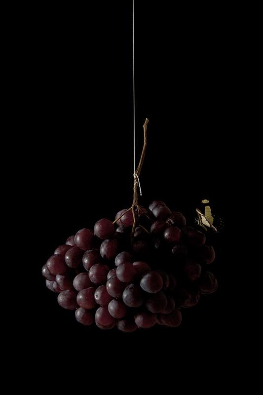 """Vanessa Colareta, """"Still Life: Story Behind"""" (Naturaleza Muerta. Fotografía). Imagen cortesía de la artista."""