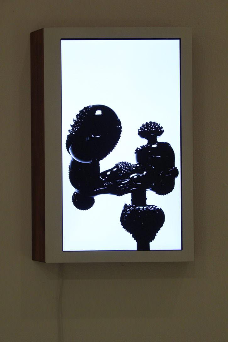 """Alessandro Brighetti, """"Lophophora"""" (Serie Pentothal). Imagen cortesía de la galería.."""
