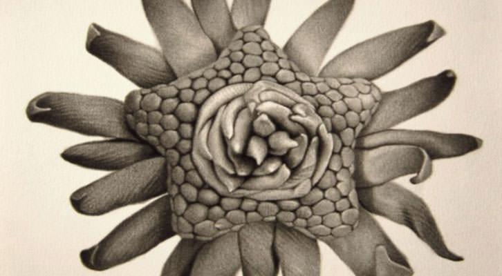 Detalle de una de las obras de Ernesto Casero. Imagen cortesía de Gris Magatzem d'Art.