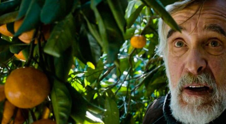 Lembit Ulfsak en un fotograma de 'Mandariinid', de Zaza Urushadze. Cinema Jove