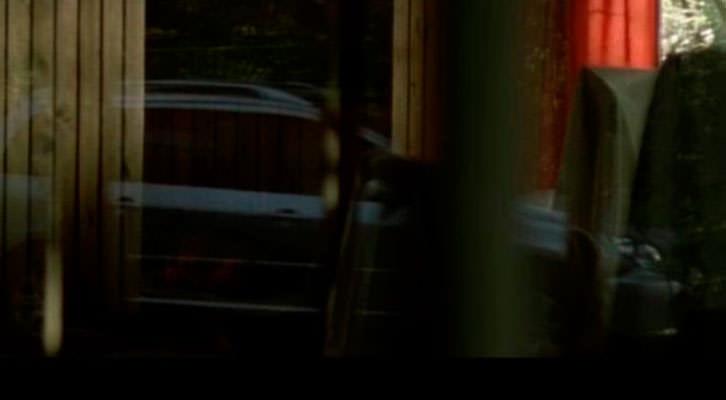 Fotograma de la película 'Violet', de Bas Devos. Cinema Jove.