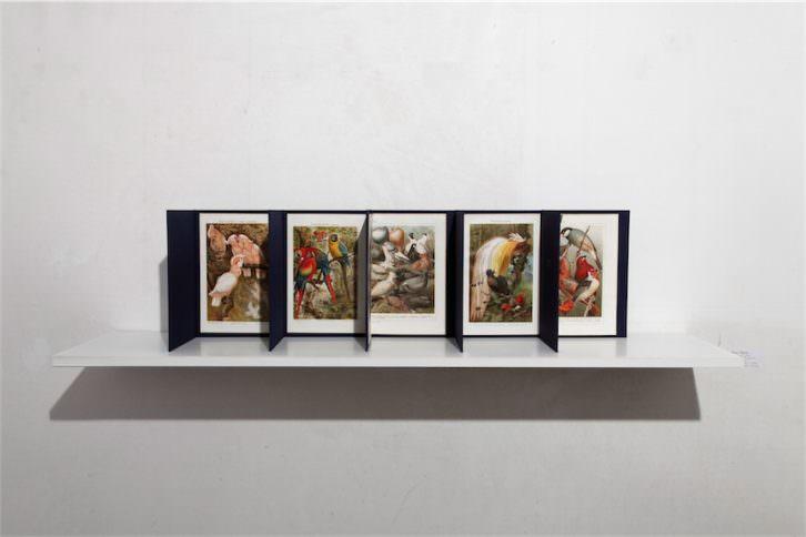 Anna Talens. Cinco jaulas, 2013. Litografías originales del S. XIX, papel, tinta y poliamida. 20 x 27 x 20 cm. Cortesía Galería Paz y Comedias.