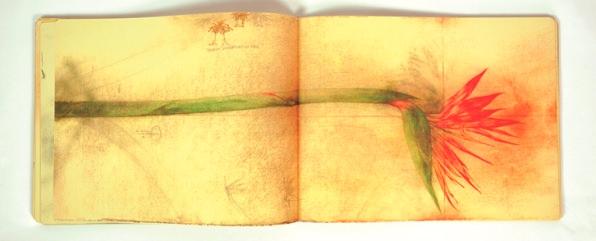 Talismán, cuaderno de apuntes, de José Hernández. Imagen cortesía de José Emilio Antón