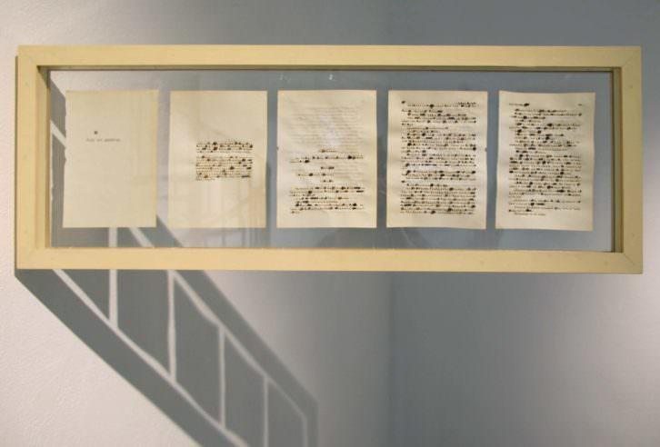 Rocío Garriga. Act without words II, 2014. Semillas, papel, madera y cristal. 30 x 86 cm. Cortesía Galería Paz y Comedias.