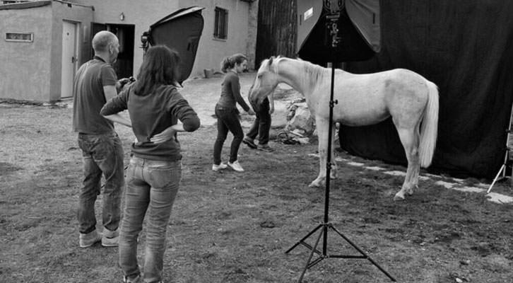 En plena sesión fotográfica. Imagen cortesía de Fotopets, retratistas de animales.