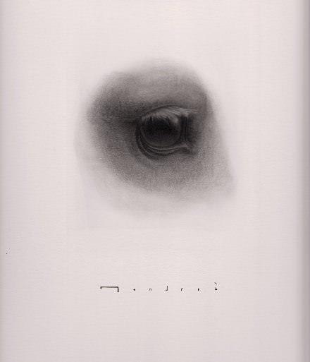 """Detalle de """"El caballo y el soldado"""",  de Carlos Mondriá. 30 x 40 cm. grafíto sobre papel. Imágen cortesía del autor."""