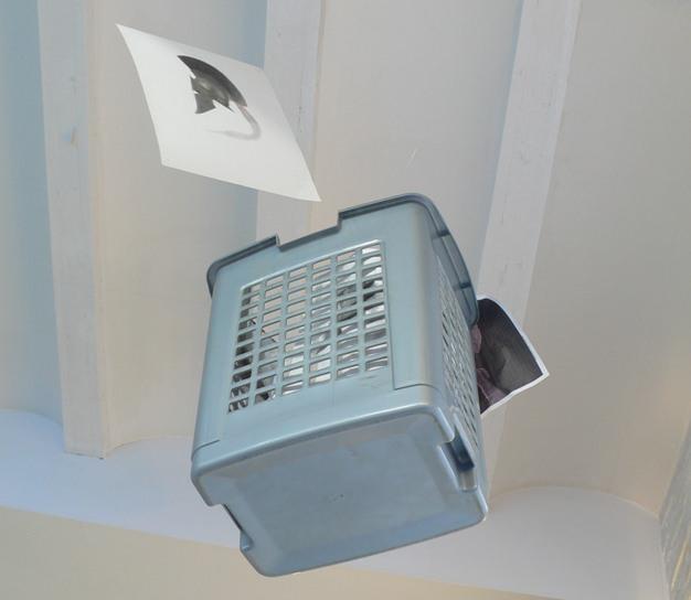 Detalle de la exposición de Carlos Mondriá.