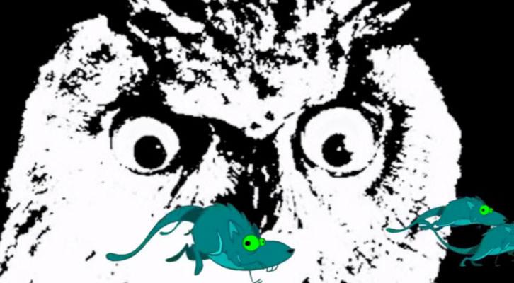 Imagen de la primera edición de MiCe.