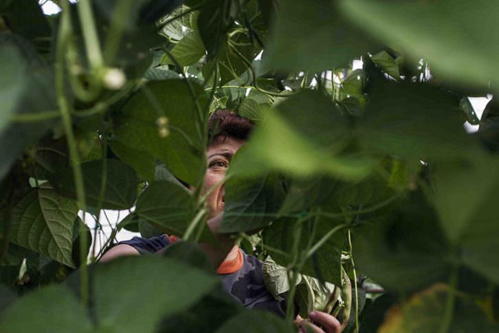 Rosa, agricultora, en la fotografía de Irene Marsilla. Imagen cortesía de Dones Fotoperiodistes.