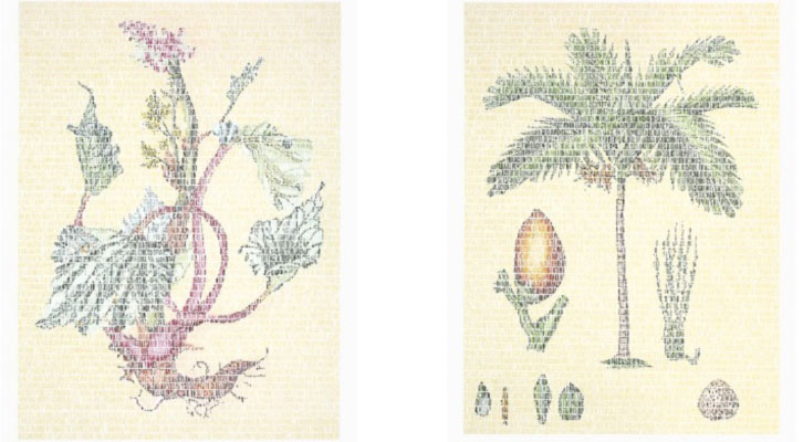 Obras de Juanli Carrión. Imagen cortesía de Galería Rosa Santos.