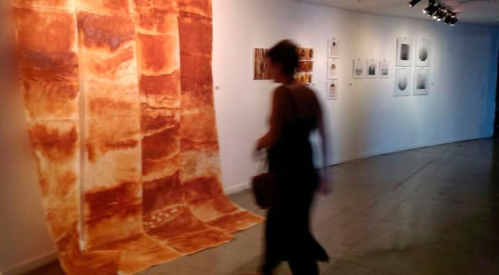 Vista de la exposición La Naturaleza como pretexto, de Elena Martí. Cortesía de Imprevisual Galería.