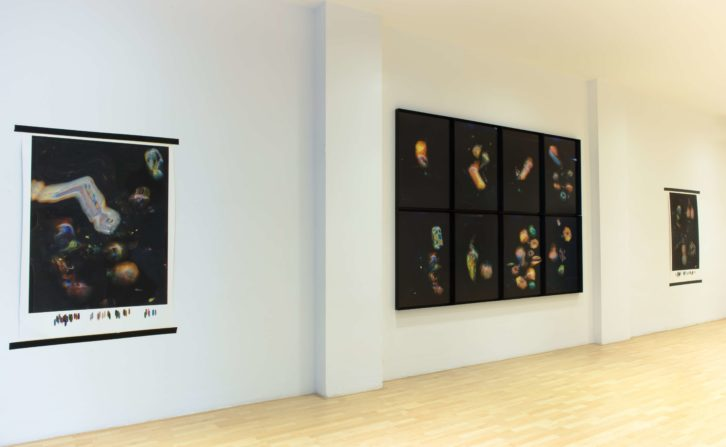 Vista general de la exposición de Radigales en la galería Carolina Rojo.
