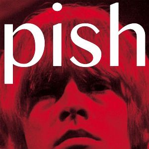 39. THE BRIAN JONESTOWN MASSACRE -– Mini Album Thingy Wingy