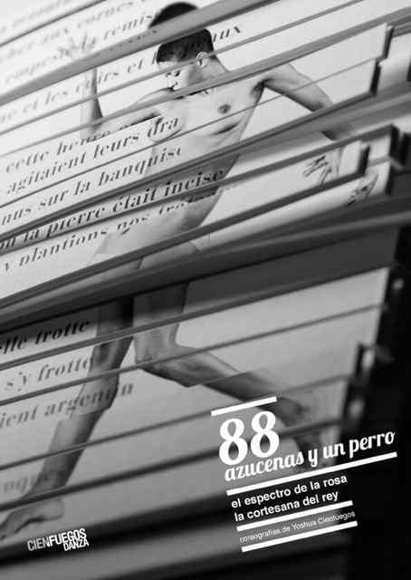 88 azucenasç