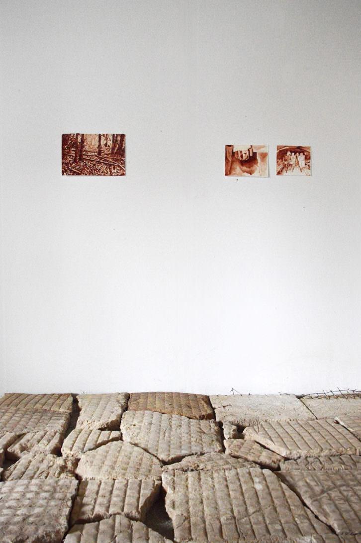 Engaña, exposición de Javier Arce. Imagen cortesía de Galería Siboney.