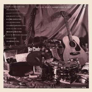 4. Hay folk, blues y tambien rock&roll