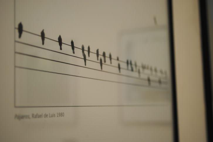 Detalle de 'Pájaros' Rafael de Luis, 1980. Fotografía: María Ramis.