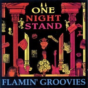 Groovies - one night stand