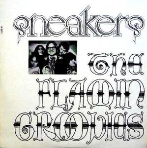 Groovies - snakers