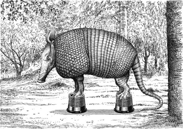 Una de las imágenes del Animalario del Universal del Profesor Revillod.