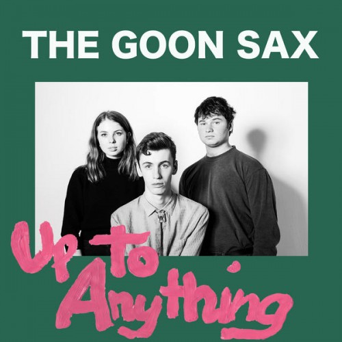 14 - The Goon Sax- Up To Anything