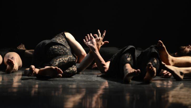 Sharon Fridman. Imagen cortesía de Dansa València.