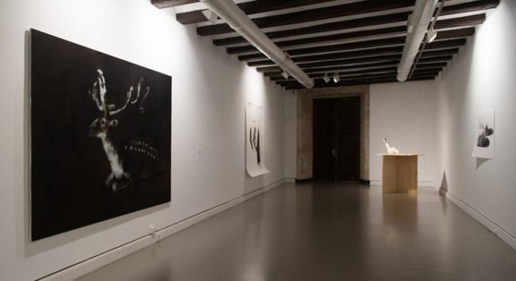 Vista de la exposición 'Dócil', de Carlos Domingo. Imagen cortesía del Museo de Teruel.