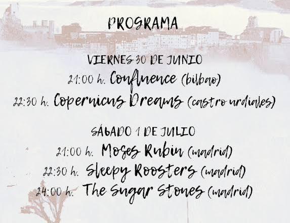 a-dos-pasos-del-blues-festival-frias-3