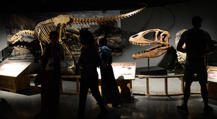 Spinosaurus: el gigante perdido. Imagen cortesía del Museo de las Ciencias.