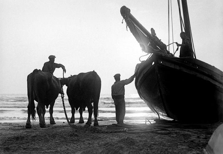 Pesca del bou, de Martín Vidal Romero. Imagen cortesía de Muvaet.