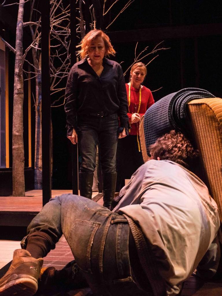 Un instante de la representación de 'Cronología de las bestias', protagonizada por Carmen Machi. Fotografía: Javier Naval.