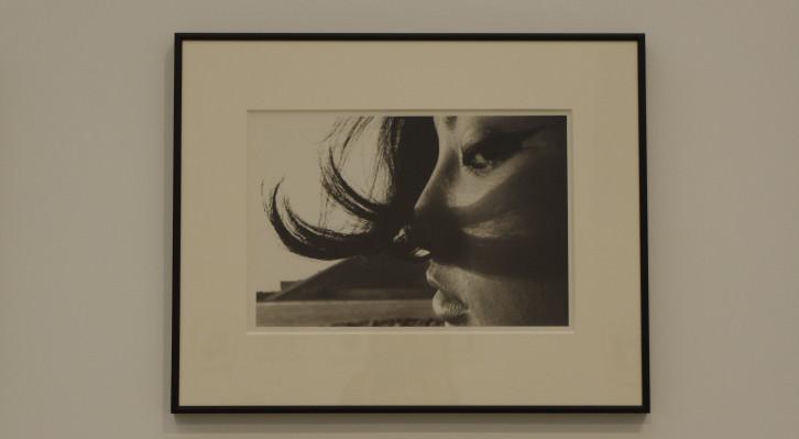 Imagen de portada artículo Provoke, Cristina Tro Pacheco