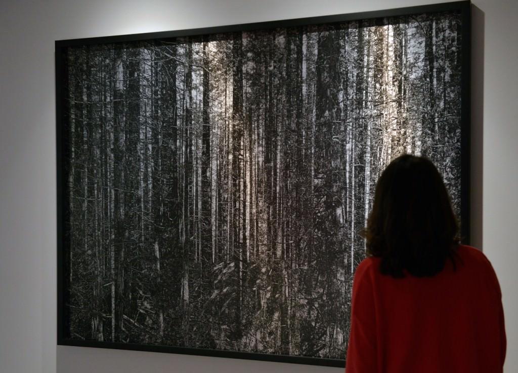 Una joven contempla una de las obras de Paco Caparrós. Imagen cortesía de Fundación Bancaja.