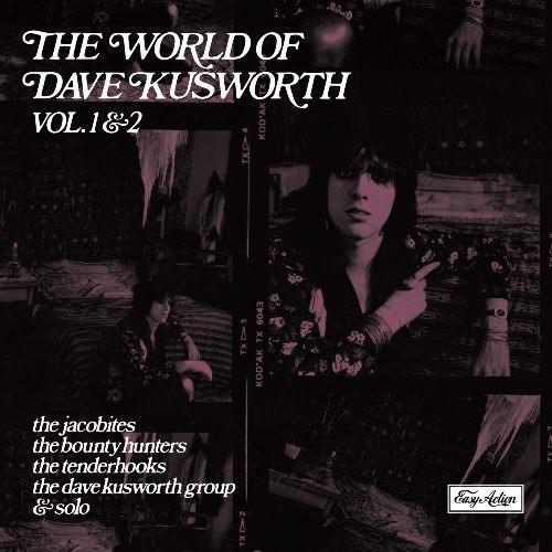 el-mundo-de-dave-kusworth-3