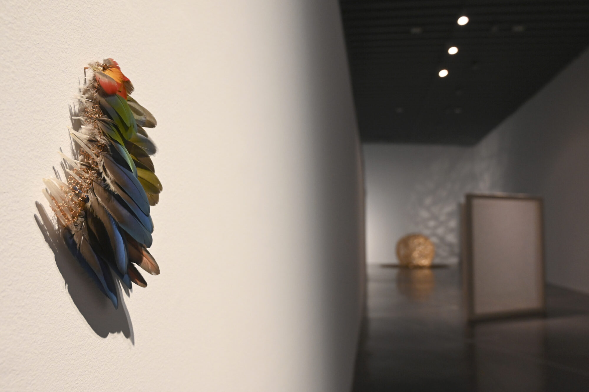 EACC 'Reconstruyendo aves', de Anna Talens.